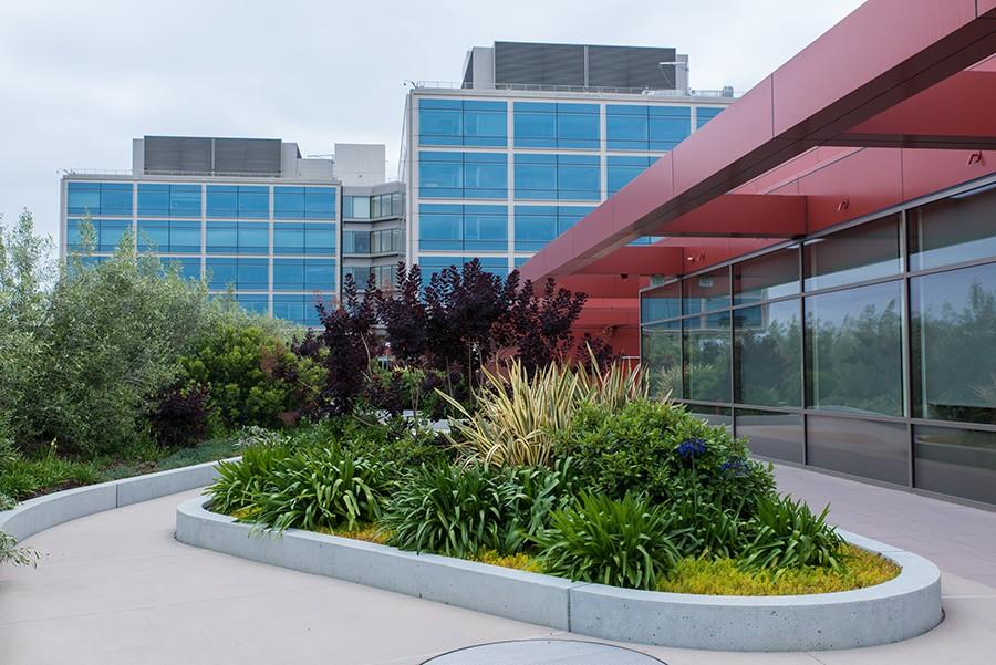 NSH_Administrative-Gardens